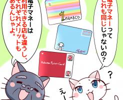nanaco 使える店 比較
