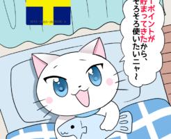 背景にTポイントカードがあり、 白猫が「Tポイントが貯まってきたから、そろそろ使いたいニャ~。」 と言っているシーン