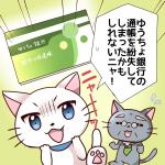ゆうちょ銀行の通帳を紛失した時の対処法と通帳を再発行する方法