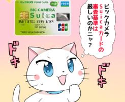 背景にビックカメラSuicaカードがあり、 白猫が「ビックカメラSuicaカードの審査基準は厳しいのかニャ?」 と考えているシーン