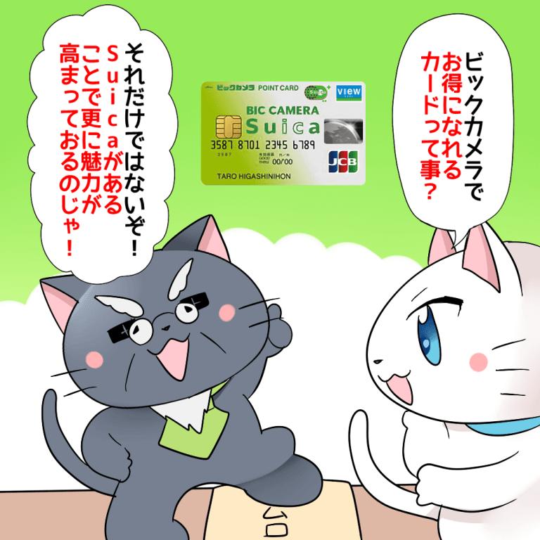 白猫が「ビックカメラでお得になれるカードってこと?」と言って、博士が「それだけではないぞ!Suicaがあることで更に魅力が高まっておるのじゃ!」と言っているイラスト