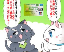 背景にビックカメラSuicaカードがあり、 白猫が「ビックカメラでお得になれるカードって事?」 博士が「それだけではないぞ!Suicaがあることで更に魅力が高まっておるのじゃ!」と言っているシーン