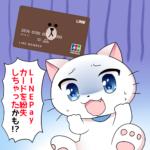 LINEPayカードを紛失した時の手続きと再発行の方法
