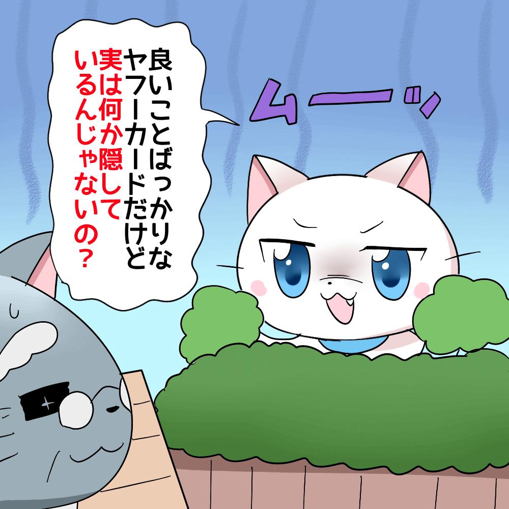 白猫が博士に「良いことばっかりなヤフーカードだけど実は何か隠しているんじゃないの?」と言っているイラスト