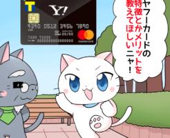 白猫が博士に「ヤフーカードの特徴とかメリットを教えてほしい!」と言っているイラスト