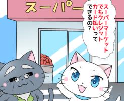 白猫が博士に 「スーパーマーケットでもクレジットカード払いってできるの?」 と聞いているシーン(背景にスーパーマケットのイラスト)