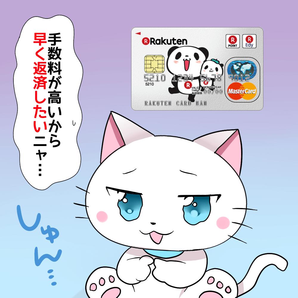 背景に楽天カードがあり、 白猫が「手数料が高いから早く返済したいニャ…」 と落ち込んでいるシーン