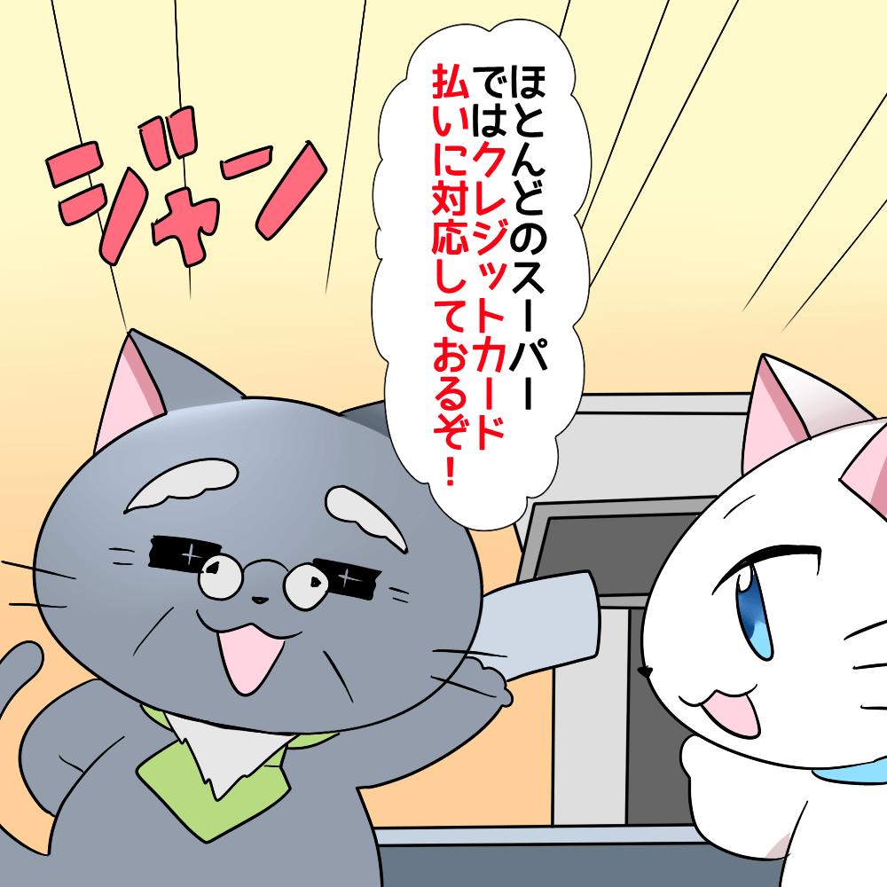 博士が白猫に、スーパーのレジ前で 「ほとんどのスーパーではクレジットカード払いに対応しておるぞ!」 と言っているシーン