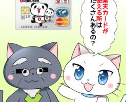 背景に楽天カードがあり、 白猫が「楽天カードが使える所はたくさんあるの?」 と博士に聞いているシーン