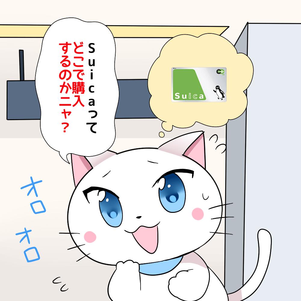 白猫が「Suicaってどこで購入するのかニャ?」 と駅で迷っているシーン(背景にSuicaカード)
