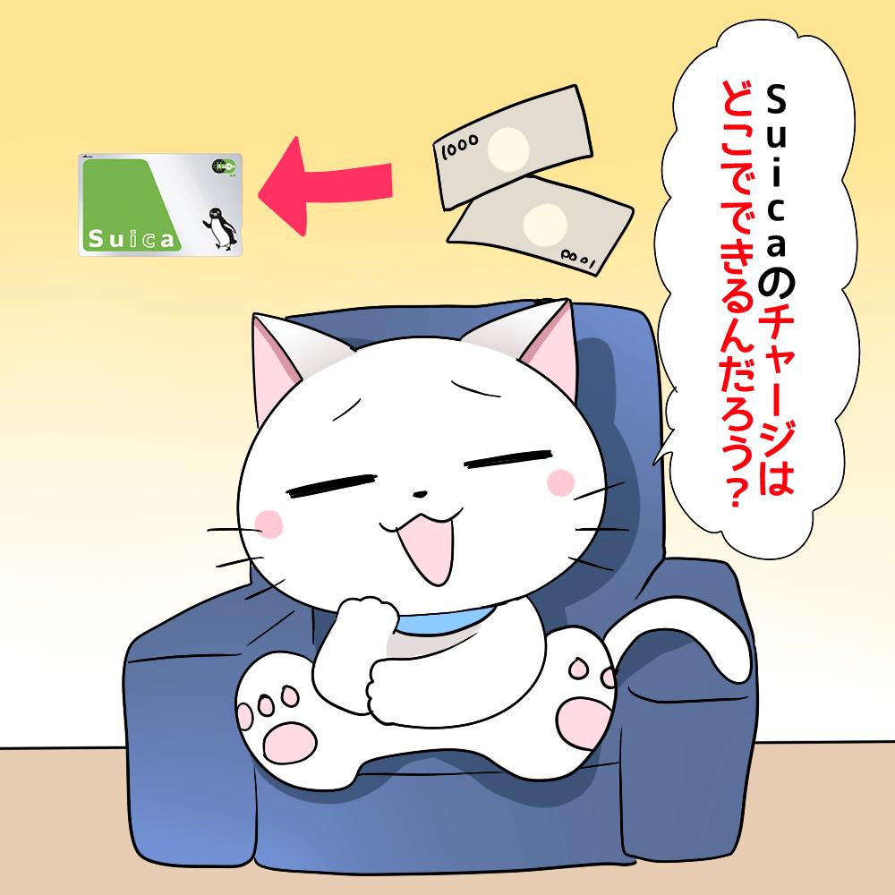 背景にSuicaがあり、白猫が 「Suicaのチャージはどこでできるんだろう?」 と考えているシーン