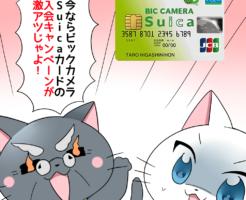 博士が目を燃やしながら 「今ならビックカメラSuicaカードの入会キャンペーンが激アツじゃよ!」 と白猫に言っているシーン(背景にビックカメラSuicaカード)