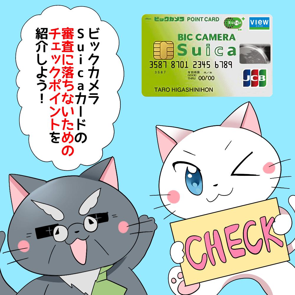 博士が白猫に 「ビックカメラSuicaカードの審査に落ちないためのチェックポイントを紹介しよう!」 と言っているシーン(背景にビックカメラSuicaカード)