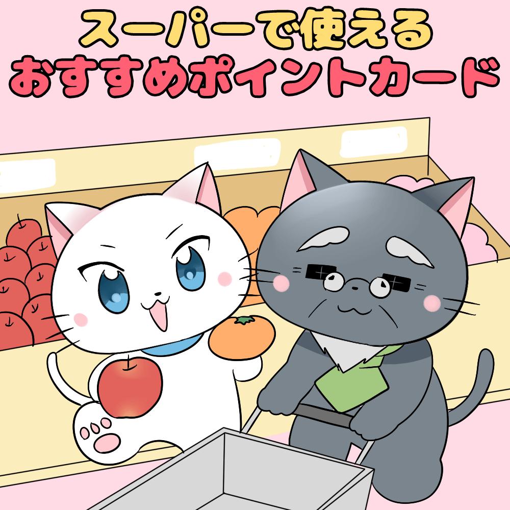 イラスト文字で 「スーパーで使えるおすすめポイントカード」 と記載し、下に白猫と博士がいるイラスト(背景にスーパーのイラスト)