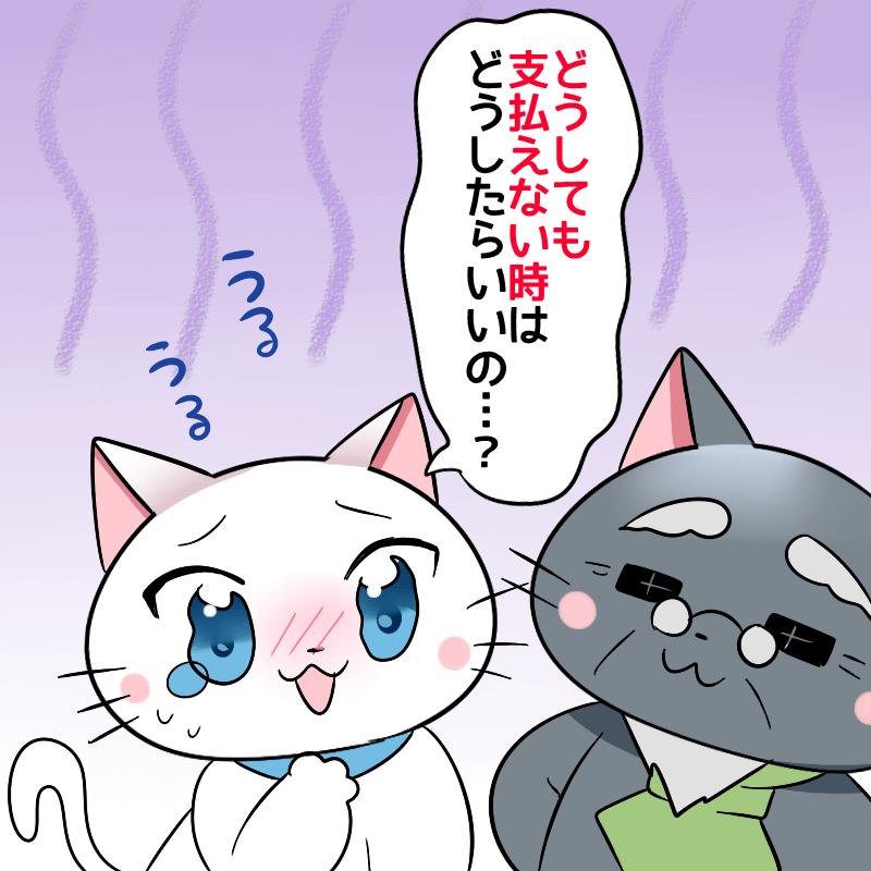 白猫が博士に 『どうしても支払えない時はどうしたらいいの…?』 と、不安になりながら博士に聞いているイラスト
