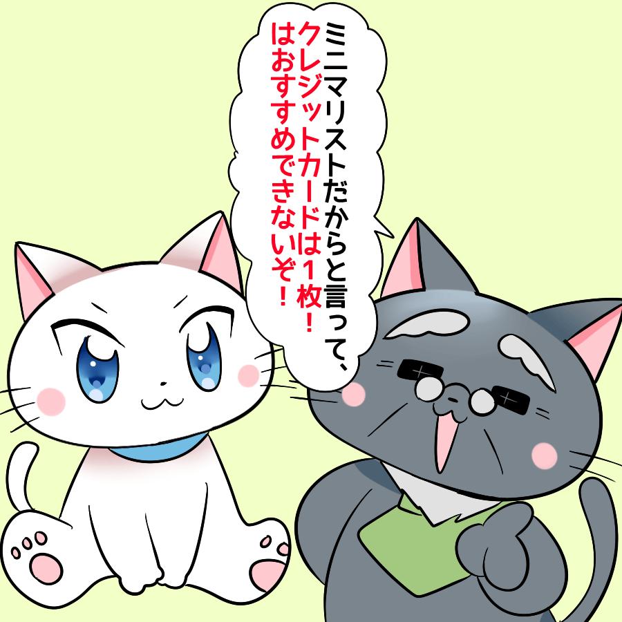 博士が白猫に 『ミニマリストだからと言って、クレジットカードは1枚!はおすすめできないぞ!』 と言っているイラスト
