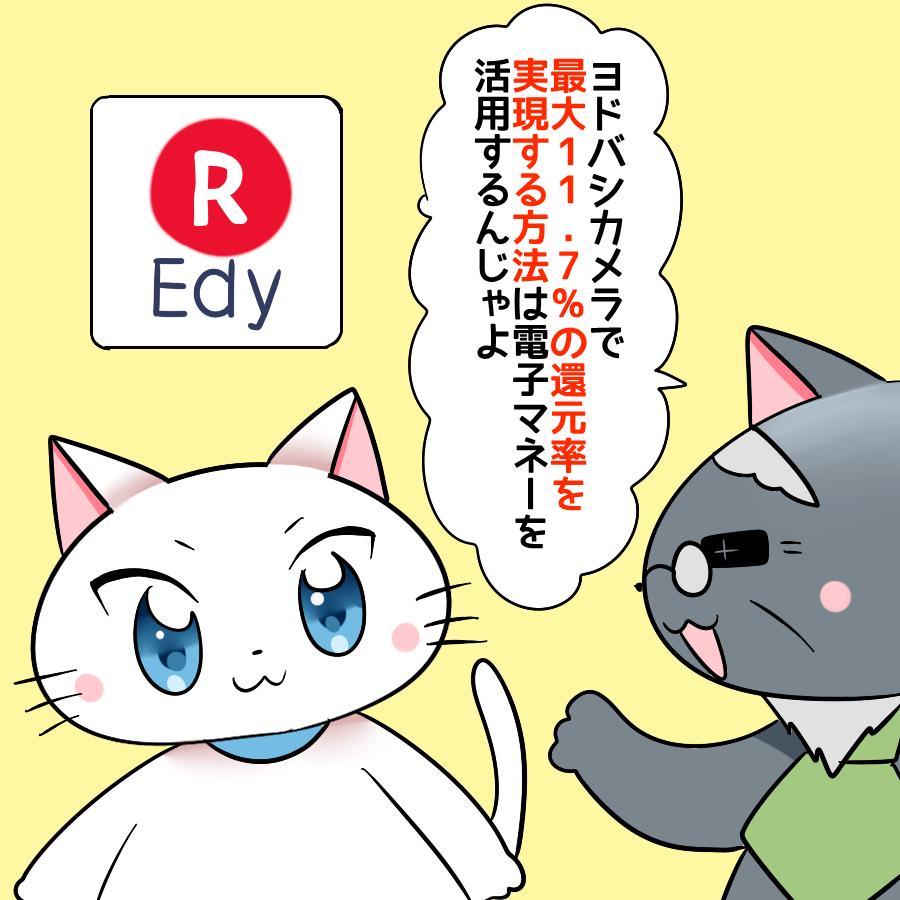 『ヨドバシカメラで最大11.7%の還元率を実現する方法は電子マネーを活用するんじゃよ。』 と博士が白猫に言い、背景に楽天Edy